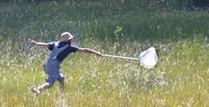 Child playing with a net in a field