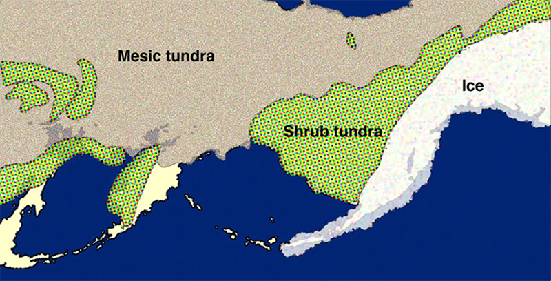 Map of mesic tundra next to shrub tundra next to ice