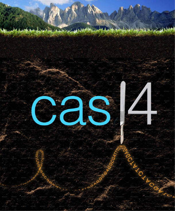 graphic explaining isolation of Cas14 from Colorado soil