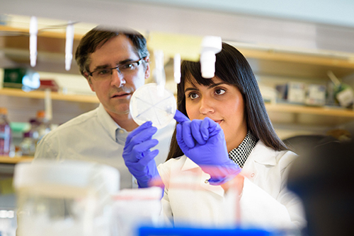 Doctoral candidate Raissa Estrela with Jamie Cate in laboratory
