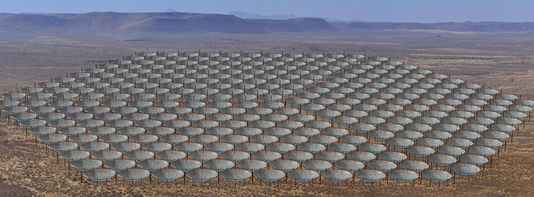 The HERA collaboration expects eventually to expand to 330 radio dishes in the core array, each pointed straight up to measure radiation originally emitted some 13 billion years ago. Twenty outrigger dishes (not shown) are also planned, bringing the array up to 350 dishes total.
