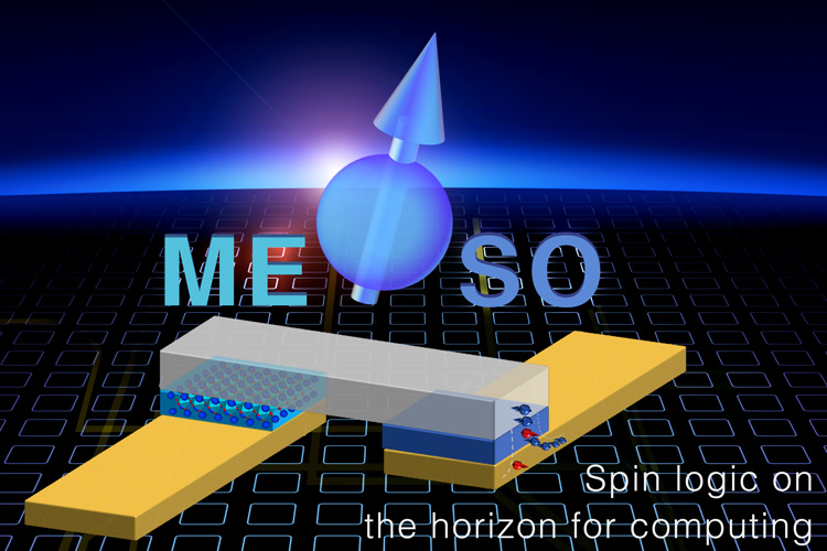 diagram of MESO device