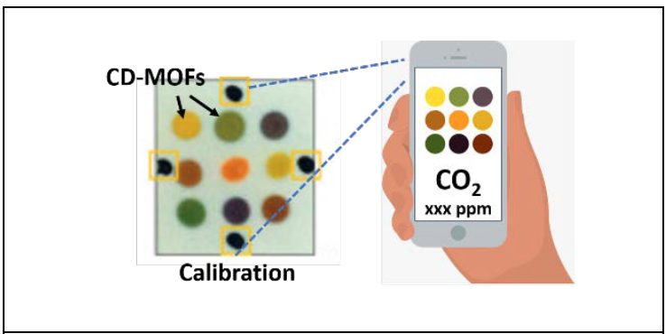 illustration of CO2 application showing different levels of pH by color.