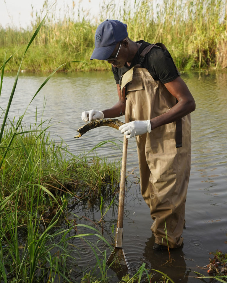 A man stands in waders in a stream, looking at a wooden scythe.