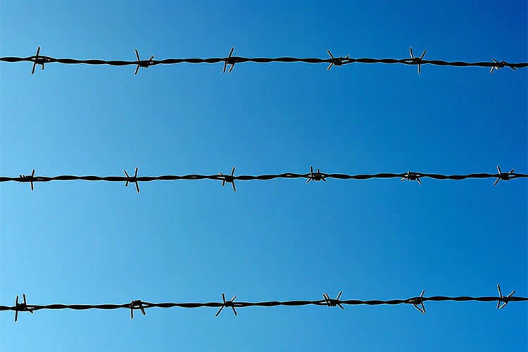 Three lines of barbed wire