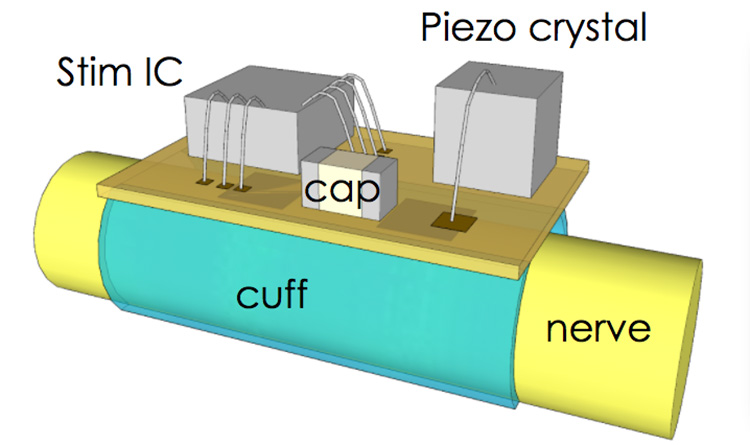 Components of StimDust: Stim IC, piezo crystal, and cap are all attached on a plane on top of a cuff, which is placed on a nerve