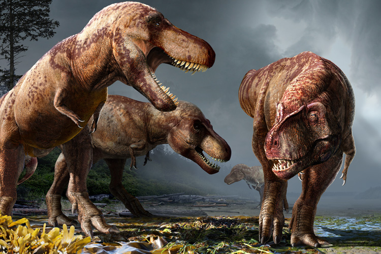painting of three T. rex