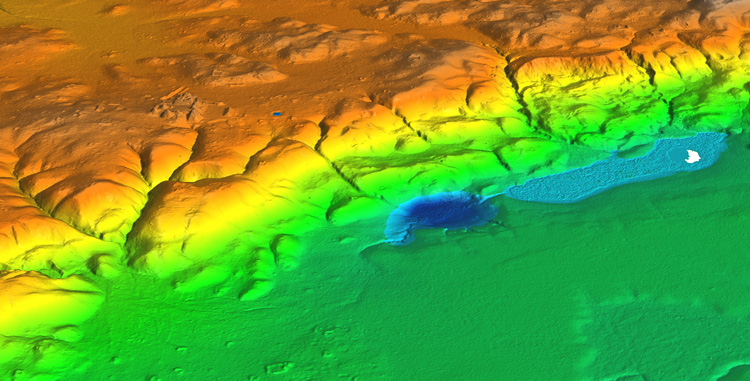 LIDAR image of the ruined Mayan city of Witzna