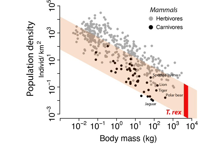 chart of body mass versus population density of living mammals, the image shows that t rexs had low population density and high body mass