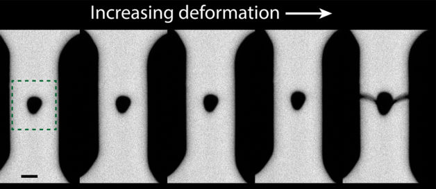 Scan of increasing deformation in nanostructure