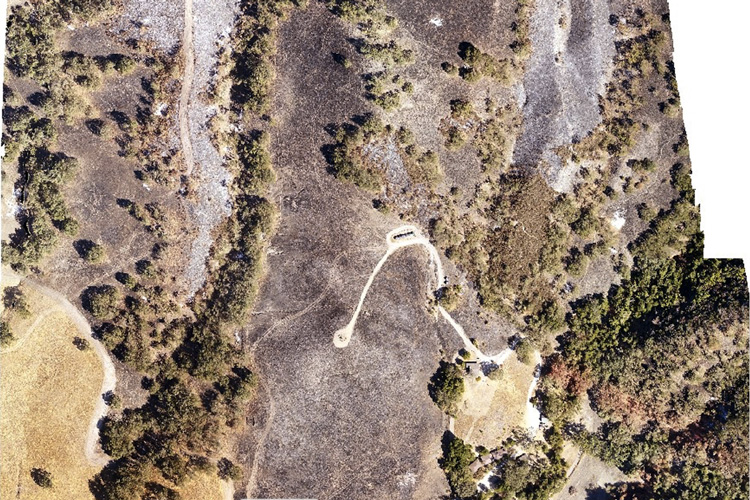 drone view of burned portions of Hastings Reserve