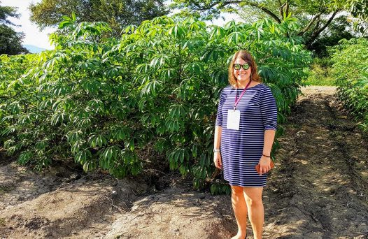 Jessica Lyons researches cassava genome editing to remove cyanide