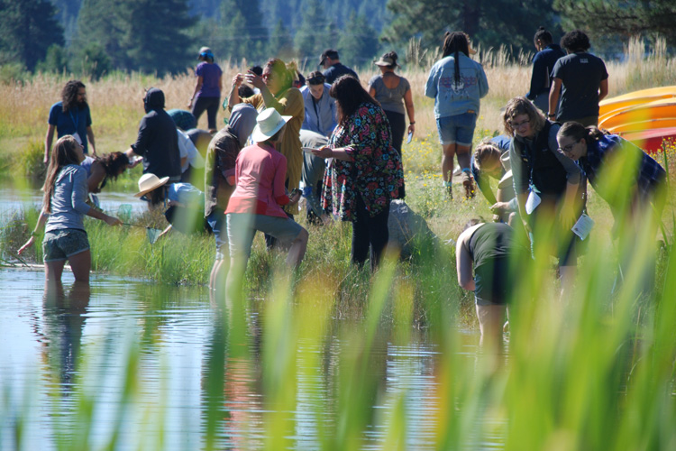 children and teachers explore life in a pond