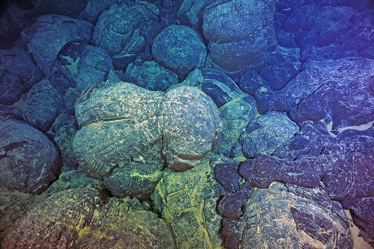 pillow basalts from undersea volcanic eruptions