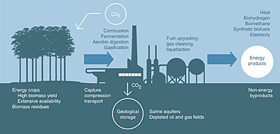 The BECCS process of converting biomass into electricity and fuels and capturing and storing the carbon emissions.