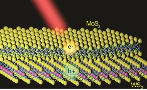 Illustration of a MoS2/WS2 heterostructure with a MoS2 monolayer lying on top of a WS2 monolayer. Electrons and holes created by light are shown to separate into different layers. Image: Feng Wang group