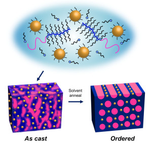 Upon solvent annealing, supramolecules made from gold nanoparticles and block copolymers will self-assemble into highly ordered thin films in one minute. - See more at: http://newscenter.lbl.gov/2014/06/09/nanoparticle-thin-films-that-self-assemble-in-one-minute/#sthash.715T7jT5.dpuf