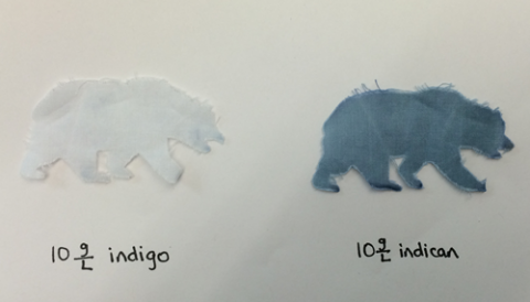 When indigo's chemical precursor is applied to cotton cloth, a single enzyme can free indigo to dye a white bear to blue.