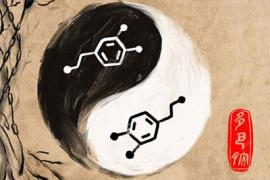 the yin and yang of dopamine