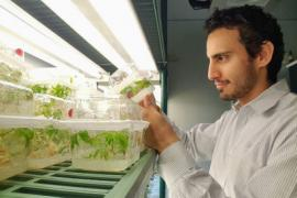 A photo showing a man holding a clear plastic container with small green plants growing inside, under a bright grow light.
