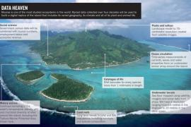 Moorea is one of the most studied ecosystems in the world.