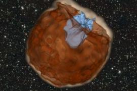 Simulation of the expanding debris from a supernova explosion